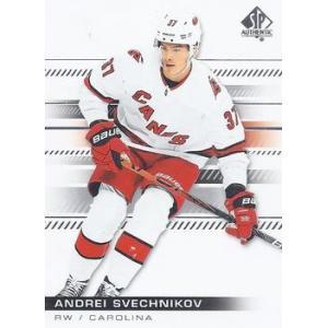 Andrei Svechnikov