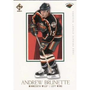 Andrew Brunette