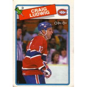Craig Ludwig